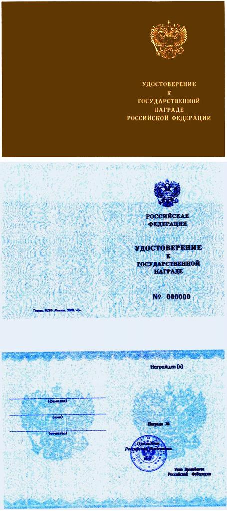 РИС. 1 К УКАЗУ ПРЕЗИДЕНТА РФ ОТ 07.09.2010 N 1099