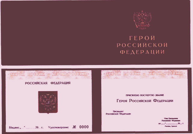 РИС. 6 К УКАЗУ ПРЕЗИДЕНТА РФ ОТ 07.09.2010 N 1099